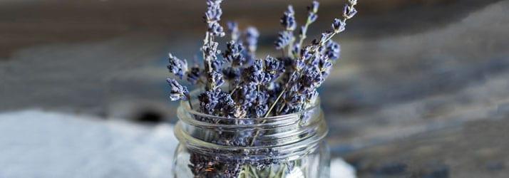 Nutritionist Framingham MA Lavender