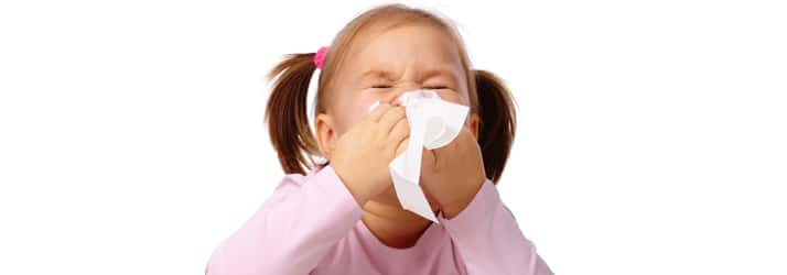 Nutritionist Framingham MA Allergies